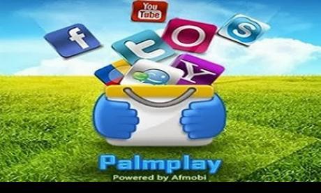 palmpay.jpg